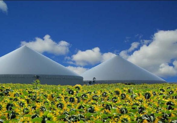 jak pozyskiwać biogaz i z czego - energiapro